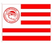 Σημαία Ολυμπιακού Ραφτή